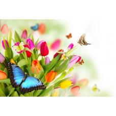 2009  Диамантен гоблен - Пеперудки на цветя