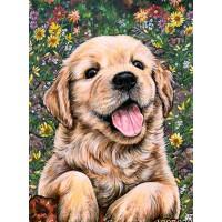 34020 Диамантен гоблен - Кученце ретривър