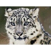 34050 Диамантен гоблен - Бял тигър