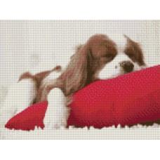 34052 Диамантен гоблен - Спящо куче