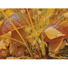 34053 Диамантен гоблен - Есенни гъби