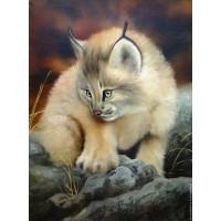 Комплект за рисуване по номера -  Мъркаща котка