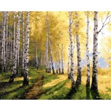 Картина по номера - Брезова горичка ZG-0312