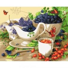 Картина по номера - Плодов натюрморт  ZG-0356