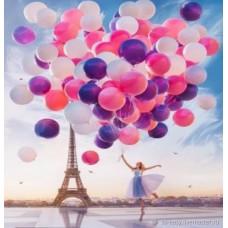 Картина по номера - Балони ZP-111