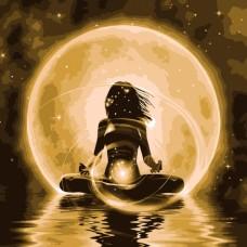 Картина по номера - Красота на лунна светлина ZP-133