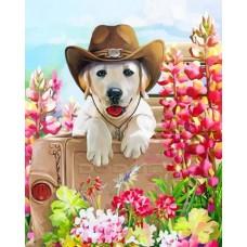 Картина по номера - Куче в шапка ZE-3163