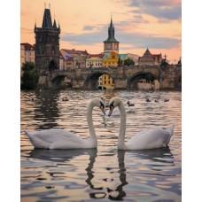 Картина по номера - Лебедова любов ZE-3167