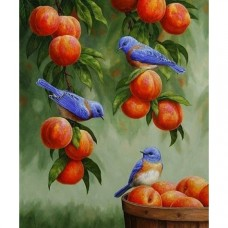 Картина по номера - Птици и праскови ZE-3214