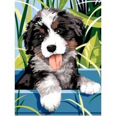 Картина по номера - Палаво кученце ZE-3230