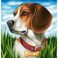 Диамантен гоблен - Кученце с каишка  22019 РАЗМЕР 20-20
