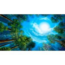 PZ 001 Диамантен гоблен - Небето