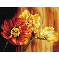 КАРТИНА ПО НОМЕРА-Красиви цветя - EX 5696