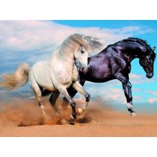 34094 Диамантен гоблен -Коне Черен и Бял