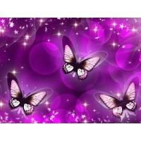 FL 34057 Диамантен гоблен - Три пеперуди