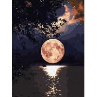 Налично след 5 юни!  Рисуване по числа - Луна EX 6363