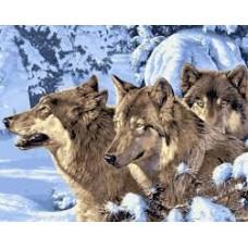 Комплект за рисуване по номера. Вълци в снега – GX 7464