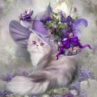 Диамантен гоблен - Котка в шапката