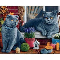 Британски  котки - Диамантен гоблен - GI 405062