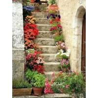 Стълбище с  цветя - Диамантен гоблен FL 34082