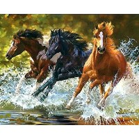 GI 405054-  Великолепни коне