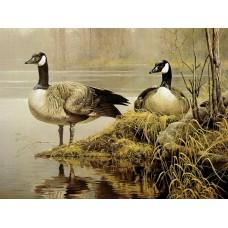 GI 304014 Диамантен гоблен- Езерото с дивите патици
