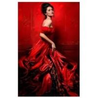 LD 40604 Диамантен гоблен - Дамата в червено