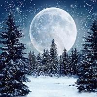 PZ 303035  Диамантен гоблен - Зимна луна