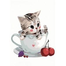 котенце в чаша