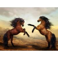 GI 304087  Диамантен гоблен - Великолепни коне