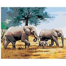 Картина по номера - Африкански слонове ZG-276