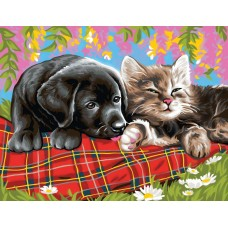 Картина по номера - Куче и котка ZE 3033