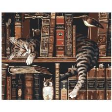 Картина по номера - Котка и книги ZG-0007