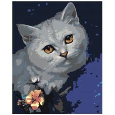 Картина по номера -  Котка ZG-0061