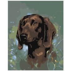Картина по номера -  Куче  ZG-0064