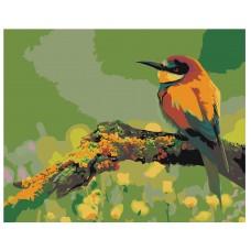 Картина по номера -  Птица  ZG-0069