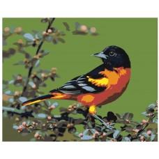 Картина по номера - Птица  ZG-0070