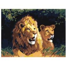 Картина по номера - Лъвове ZE-3095