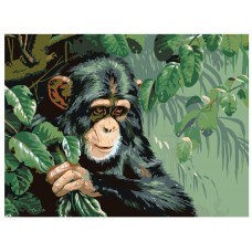 Картина по номера -  Маймуна ZE-3105