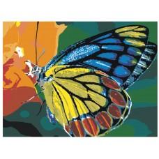 Картина по номера - Пеперуда ZE-3122