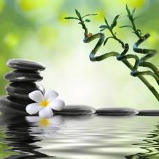 FL 304067 Каменно цвете - Диамантен гоблен