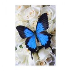 FL 304074 Пеперудка - Диамантен гоблен
