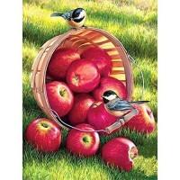 FL 304077 Птици и ябълки - Диамантен гоблен