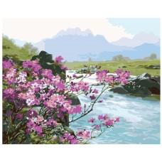 Картина по номера - Планинска река ZG-0122