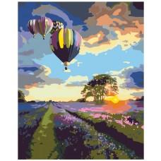 Картина по номера - Балони ZG-0131