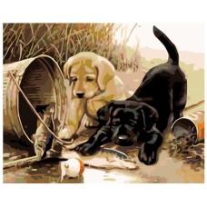 Картина по номера -  Кучета за риболов ZG-0133