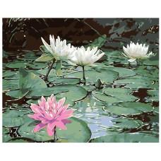 Картина по номера - Водни лилии ZG-0143
