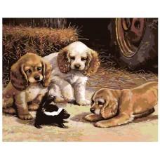 Картина по номера - Кучета ZG-0147