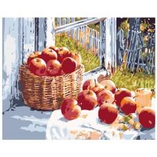 Картина по номера - Ябълки на прозореца ZG-0189