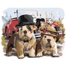 Картина по номера - Кучета ZG-0226